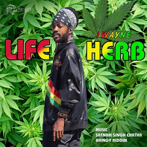 Play & Download Life Herb (feat. Satnam Singh Chatha & Bhingy Riddim) by I Wayne | Napster