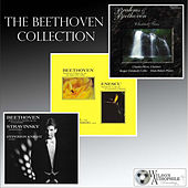 Play & Download The Beethoven Collection by Various Artists | Napster