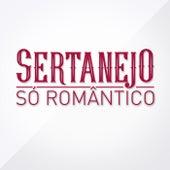 Sertanejo Só Romântico de Various Artists