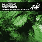 Play & Download Snakecharmer by Antoine Clamaran   Napster