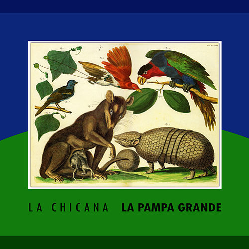 Play & Download La Pampa Grande by La Chicana | Napster