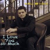 I Love You so Much by Danillo do Dandan