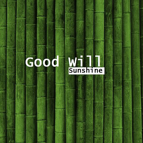 Sunshine by The Goodwill