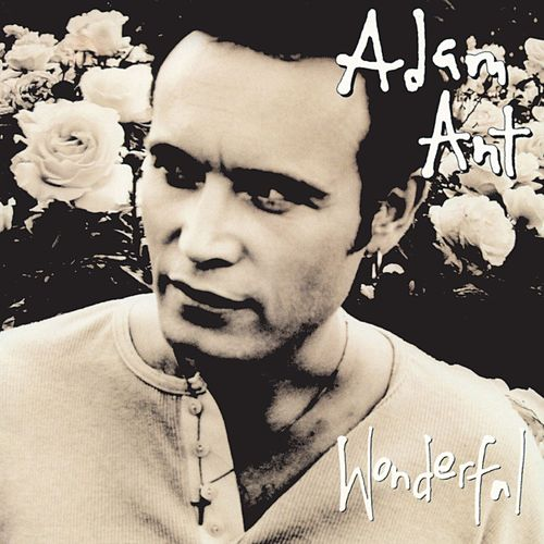 Play & Download Wonderful by Adam Ant   Napster