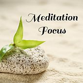 Play & Download Meditation Focus by Nature Sounds Nature Music | Napster