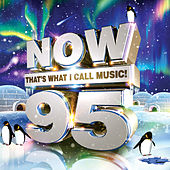 NOW That's What I Call Music! 95 by Various Artists