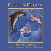 Dolphin Dreams by Jonathan Goldman