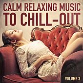 Calm Relaxing Music to Chill-Out, Vol. 3 by Various Artists