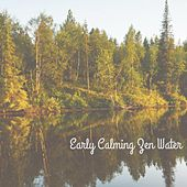 Early Calming Zen Water by Nature Sounds