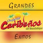Grandes Éxitos de Caribeños de Guadalupe
