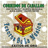 Corridos de Caballos by Various Artists