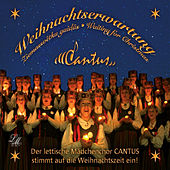 Play & Download Weihnachtserwartung by Cantus | Napster