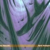 Spirit Amalgam by Ian Naismith