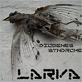 Play & Download Diogenes Syndrome by Larva | Napster