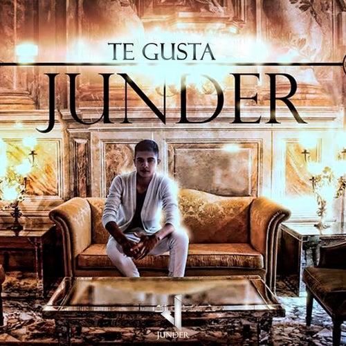 Te Gusta by Junder