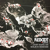 Just Hang On (Kölsch Remixes) by Reboot