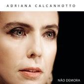 Não Demora by Adriana Calcanhotto