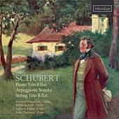 Schubert: Piano Trio - Arpeggione Sonata - String Trio by The Primrose Piano Quartet