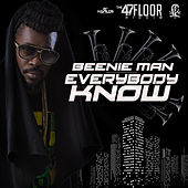 Everybody Know - Single by Beenie Man