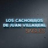 Singles by Los Cachorros de Juan Villarreal
