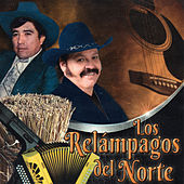 Play & Download Vuelve Gaviota by Los Relampagos Del Norte | Napster