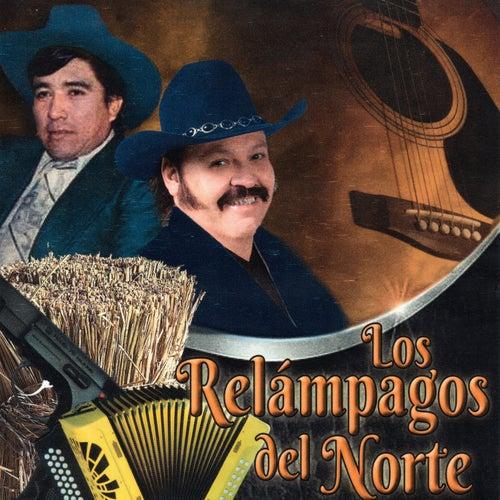 Play & Download Vuelve Gaviota by Los Relampagos Del Norte | Napster