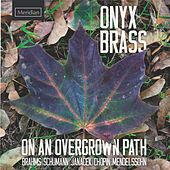 On an Overgrown Path by Onyx Brass