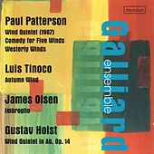 Music for Wind Quintet by The Galliard Ensemble