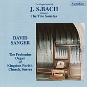 Bach: Organ Works, Vol. 4 by David Sanger