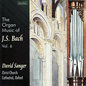 The Organ Music of J.S. Bach, Vol. 6 by David Sanger