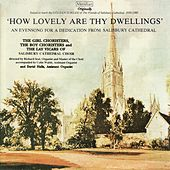 'How Lovely Are Thy Dwellings' - An Evensong for a Dedication from Salisbury Cathedral by Salisbury Cathedral Choir