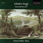 Schubert Songs Transcribed by Liszt, Vol. 1 by Antony Peebles
