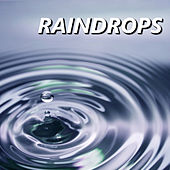Play & Download Raindrops by The Raindrops | Napster
