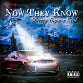Play & Download Now They Know by Zeal | Napster