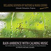 Play & Download Rain Ambience With Calming Music (Nature Sounds & Music for Sleep & Relaxation) by Relaxing Sounds of Nature | Napster