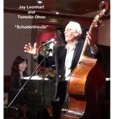 Schadenfreude by Jay Leonhart