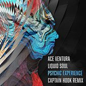 Psychic Experience (Captain Hook Remix) by Liquid Soul