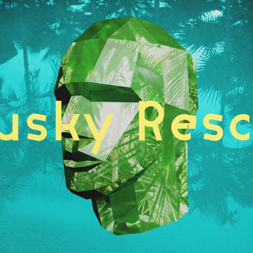 Lähtisitkö by Husky Rescue