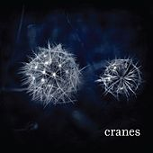 Play & Download Cranes by Cranes | Napster