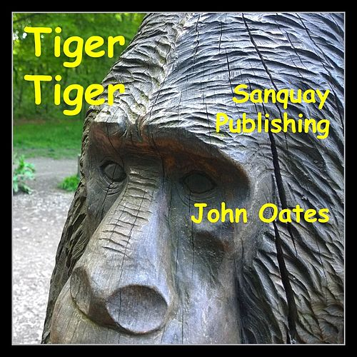 Play & Download Tiger Tiger by John Oates | Napster