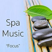 Play & Download Spa Music by Best Relaxing SPA Music | Napster