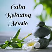 Play & Download Calm Relaxing Music by Nature Sounds Nature Music | Napster