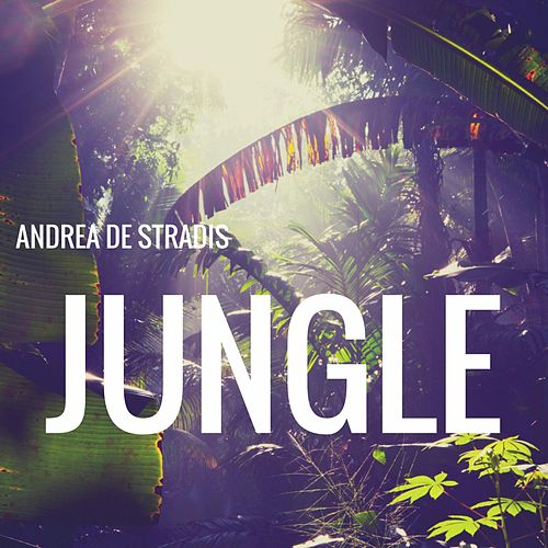 Play & Download Jungle by Andrea De stradis | Napster