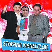 Stapanii Manelelor by Various Artists