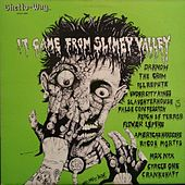 It Came from Slimey Valley by Various Artists