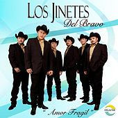Play & Download Amor Fragil by Jinetes Del Bravo | Napster