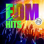 Play & Download EDM Hits 2016 by Various Artists | Napster