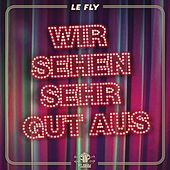 Play & Download Wir sehen sehr gut aus by Le Fly | Napster