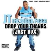 Drop Your Thangs by JT the Bigga Figga