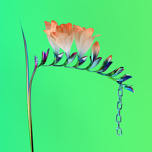 Play & Download Skin Companion EP I by Flume | Napster